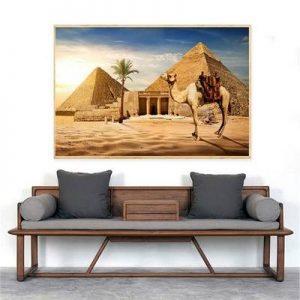 poster camelllo piramide el cairo